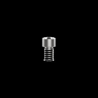Prosthetic Titanium Screw